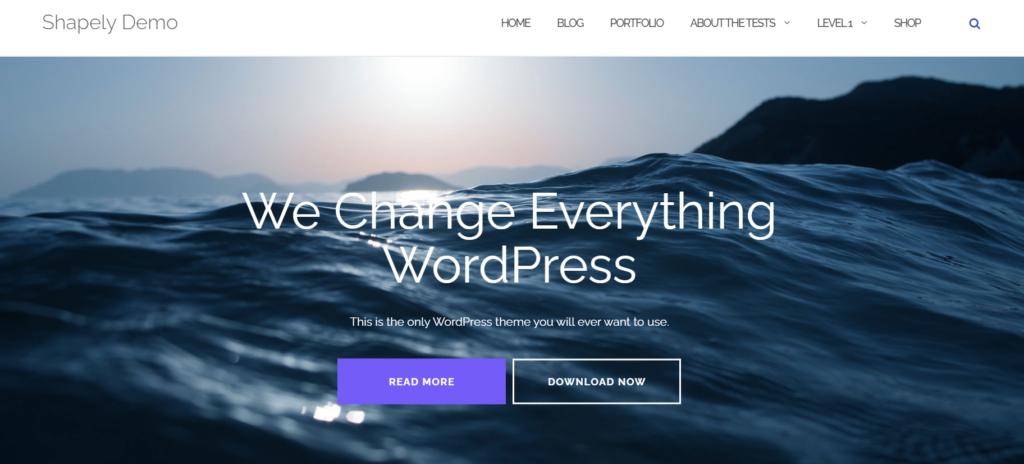 10 Best Free WordPress Themes 2021